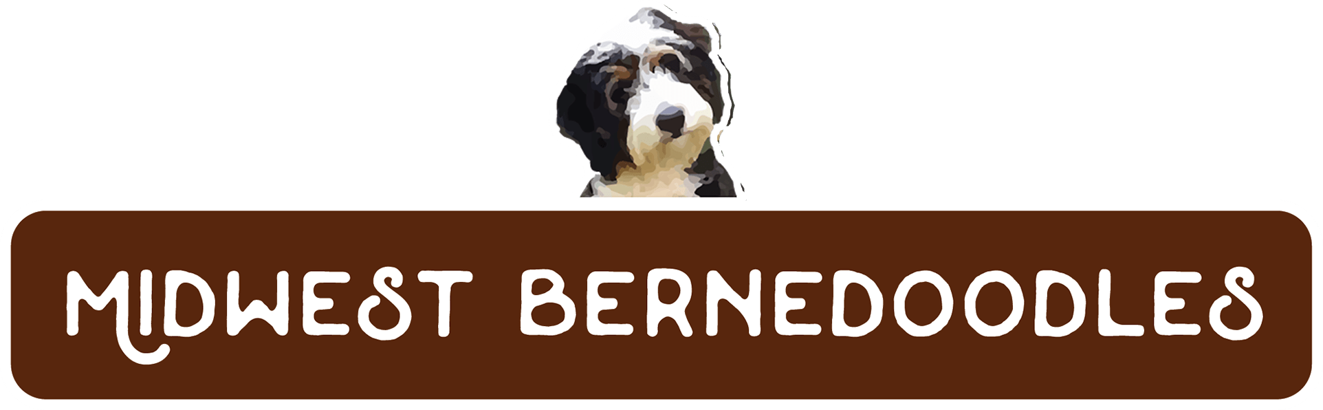 Midwest Bernedoodles